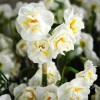 Bulbi Narcise Bridal Crown