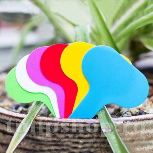 Etichete plante plastic multicolore oval