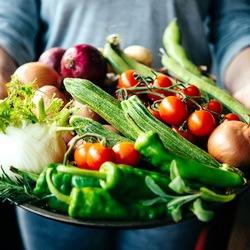 Noutati seminte legume Toamna 2020