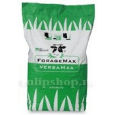 Seminte iarba furajera VersaMax Robust 10kg