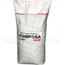 Seminte Lucerna Pomposa 10kg