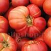 Seminte tomate Pink Brandywine 100buc.
