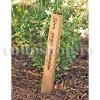Etichete plante lemn nobil Tec