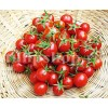 Seminte tomate Red Cherry 200buc.